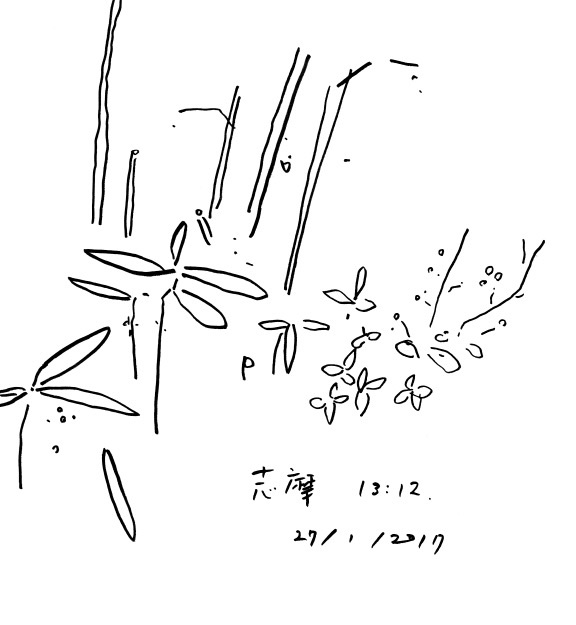f:id:mitiyoblog:20170129210300j:image