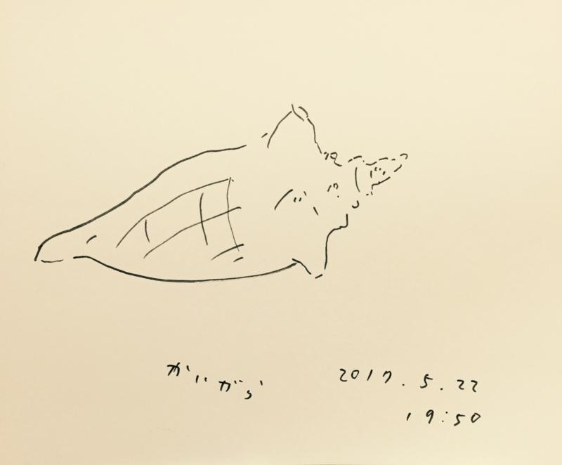 f:id:mitiyoblog:20170523202751j:image