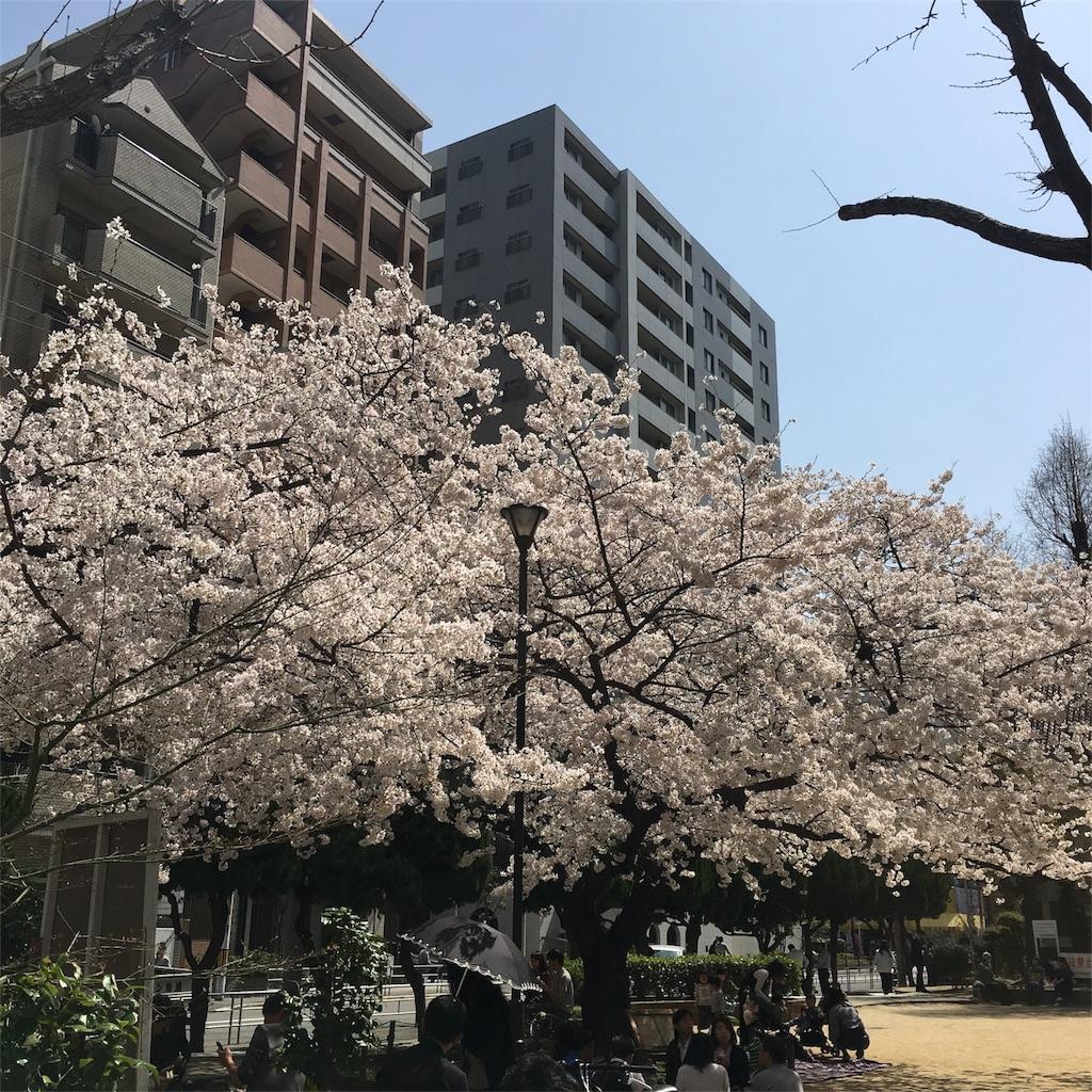 f:id:mitsu-gohan:20180329191813j:image