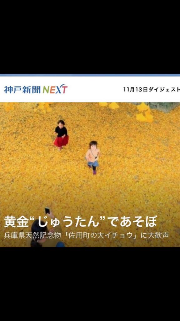 f:id:mitsu-mame:20181118200155p:image