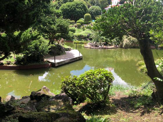 シャボテン動物公園の湖
