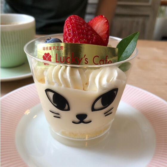 箱根ラッキーズカフェのネコのカップに入ったチーズケーキ