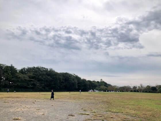 神奈川県相模原市にある麻溝公園の芝生広場