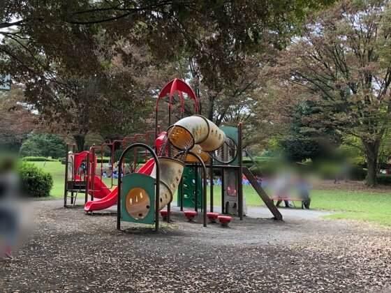 神奈川県相模原市にある相模原公園の大きい子用の遊具