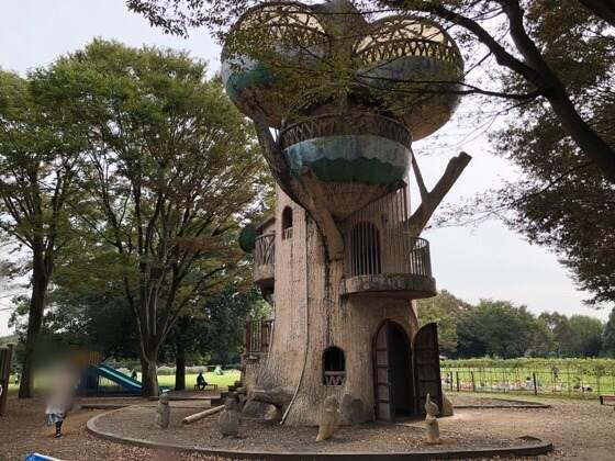 神奈川県相模原市にある相模原公園の森の木の展望台