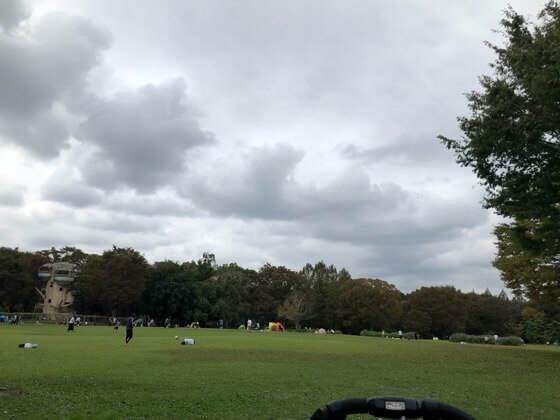 神奈川県相模原市にある相模原公園の芝生広場
