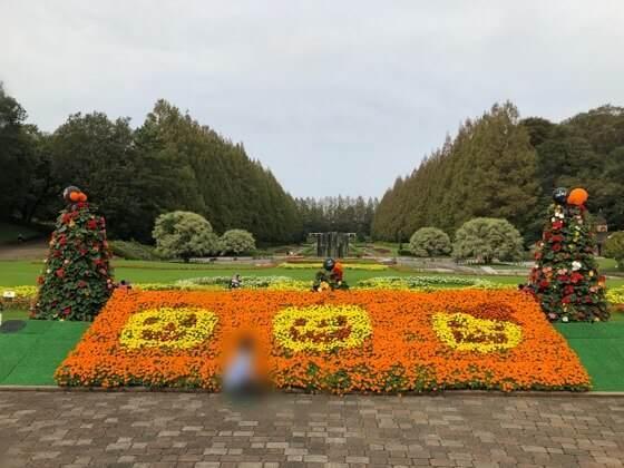 神奈川県相模原市にある相模原公園のハロウィンの装飾をした花
