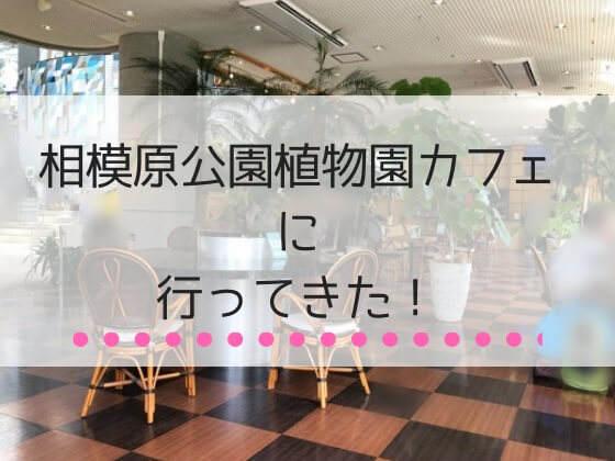 神奈川県相模原市にある相模原公園の植物園カフェ