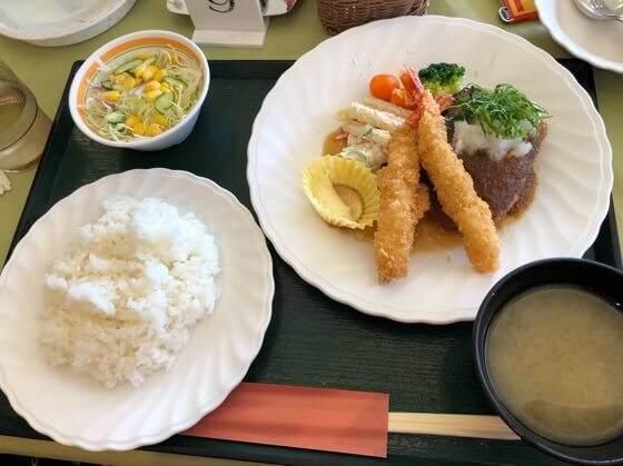 神奈川県小田原市にある生命の星地球博物館のレストランフォースのハンバーグとエビフライ