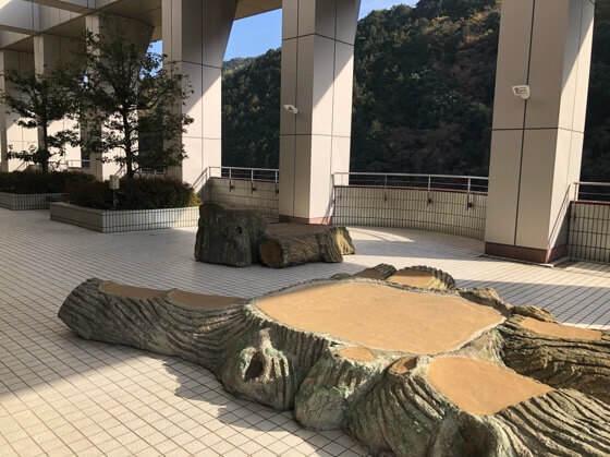 神奈川県小田原市にある生命の星地球博物館のテラス