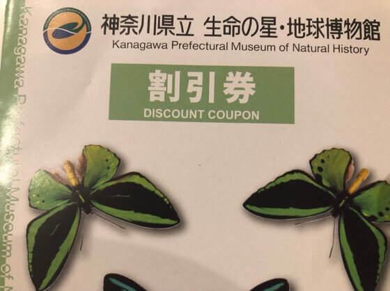 神奈川県小田原市にある生命の星地球博物館の割引券