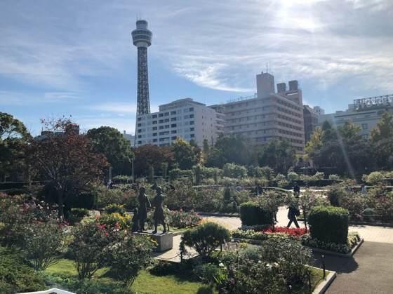 横浜にある山下公園からみえるマリンタワー