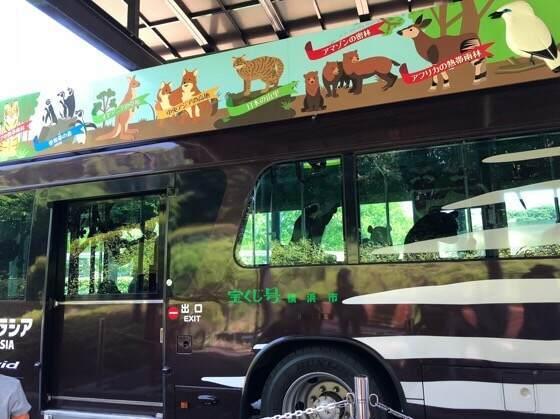 横浜にある動物園ズーラシアのオカピバス