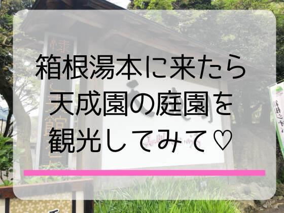 箱根湯本にある天成園は子連れにも大人にもおすすめの観光スポット