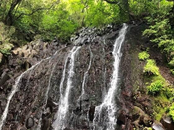 箱根湯本にある天成園のひえんの滝