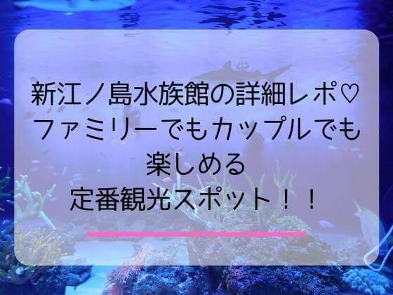 新江ノ島水族館の子連れにうれしいポイントとアクセス駐車場について
