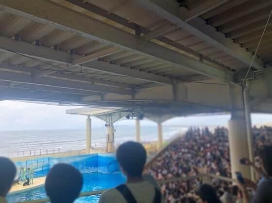 新江ノ島水族館のイルカのショーの混雑している様子