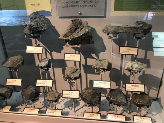 相模原市立博物館に展示してある地層ごとの岩