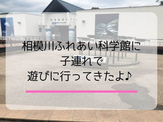 相模川ふれあい科学館のランチと楽しみ方は?