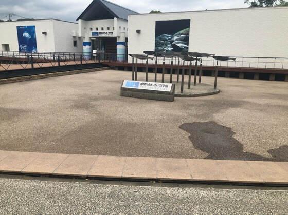 相模川ふれあい科学館のまわりの水遊びができる池