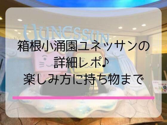 箱根小涌園ユネッサンの温泉プールで遊んだレポと宿泊と持ち物情報