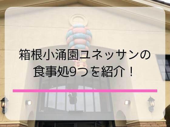 箱根小涌園ユネッサンのレストラン9つ