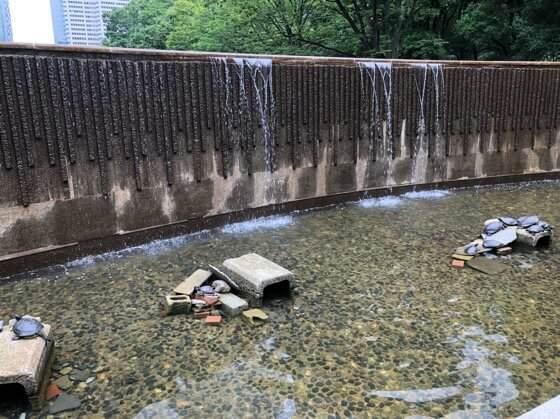 新宿中央公園にある新宿白糸の滝