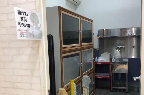 神奈川県相模原市の島忠ホームズ内にある猫カフェの手洗い場