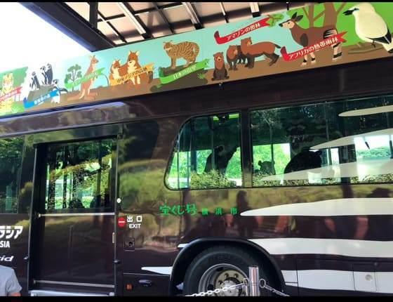 ズーラシアにあるオカピ型の園内バス