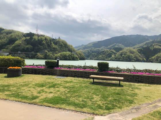 県立相模湖公園の景色