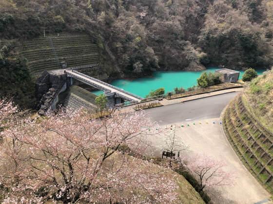 あいかわ公園から見える宮ヶ瀬ダム