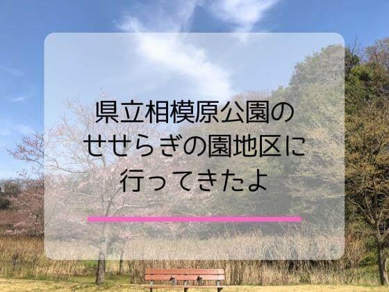 県立相模原公園の魅力を解説