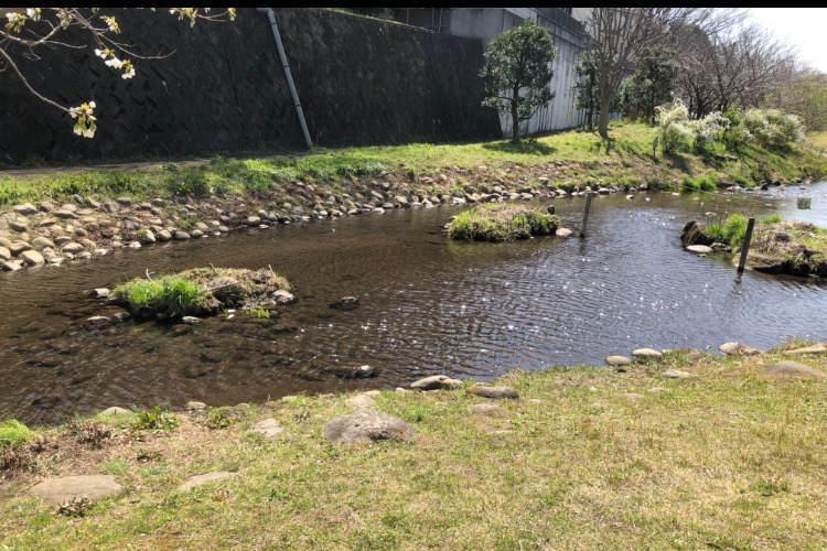 県立相模原公園のせせらぎの園で水遊びができるじゃぶじゃぶ池