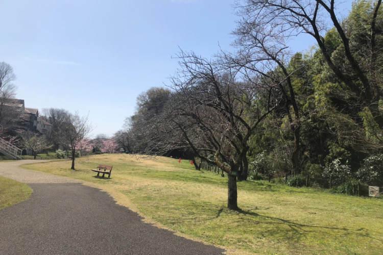 県立相模原公園のせせらぎの園のベンチ