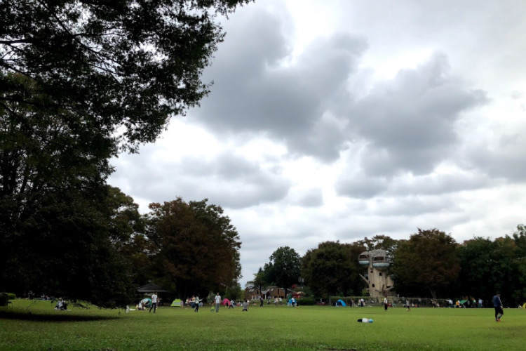 県立相模原公園の芝生広場