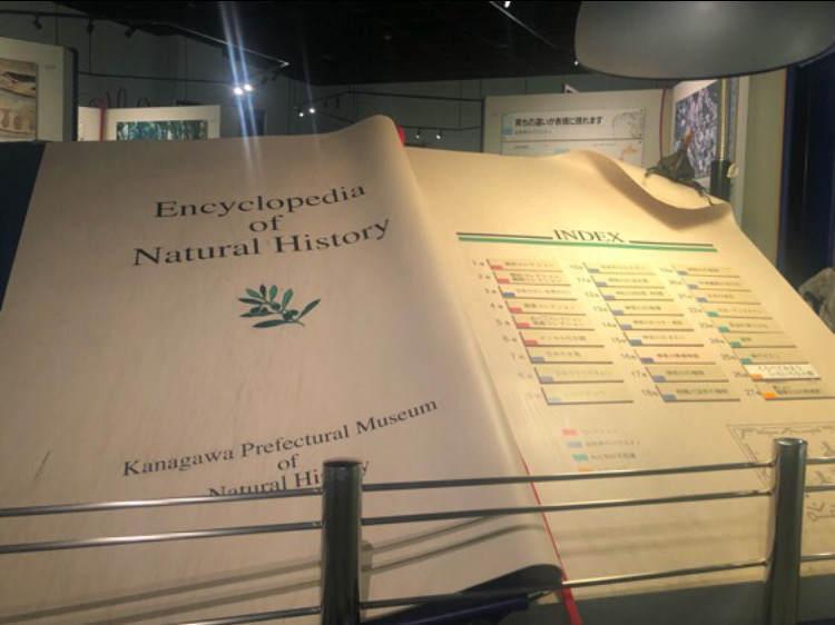 生命の星地球博物館のジャンボブック