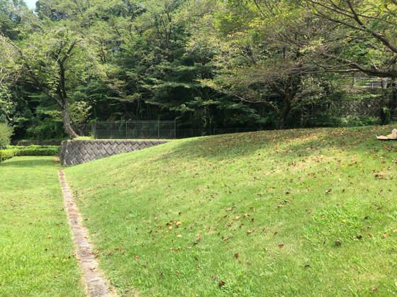 相模原公園せせらぎの園地区にある芝生の坂