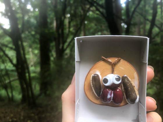 箱根森のふれあい館の木の実クラフトで作ったカブトムシのマグネット