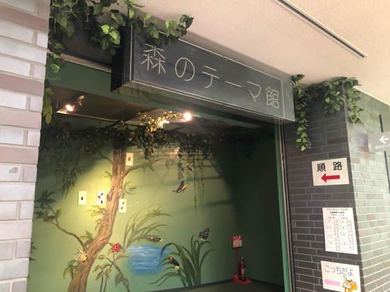 箱根森のふれあい館の森のテーマ館入口