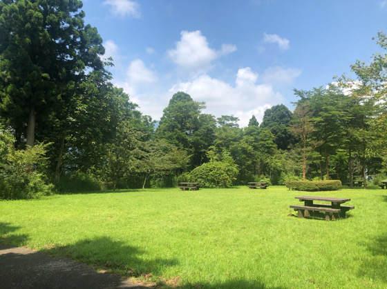 箱根やすらぎの森にある芝生広場