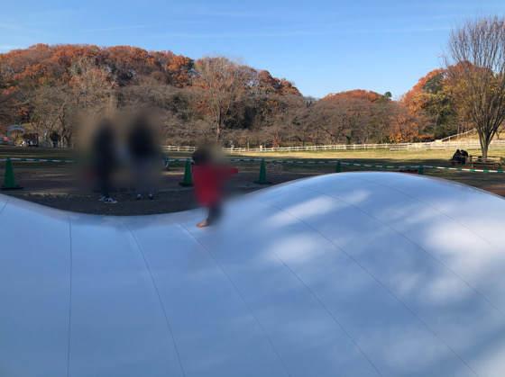 横浜こどもの国にあるモーモードーム