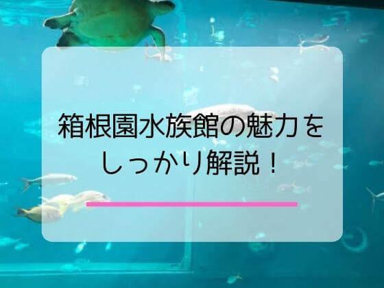 箱根園の水族館を紹介する記事のアイキャッチ画像