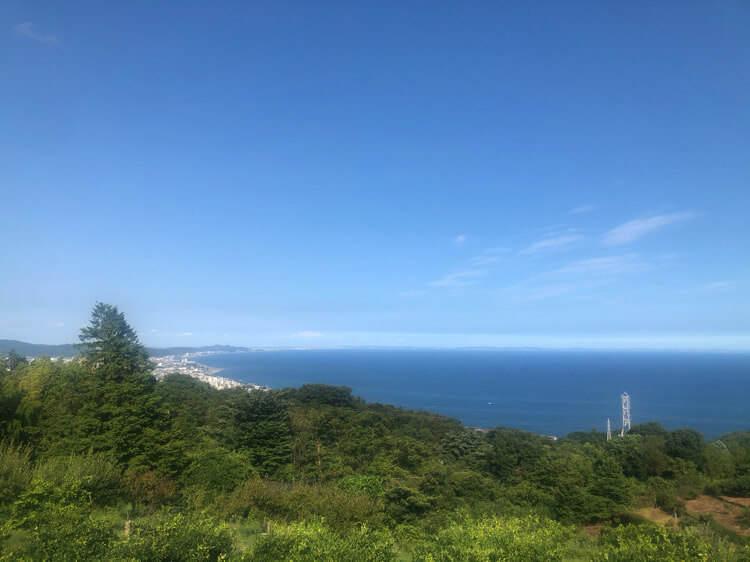 ヨロイヅカファームの農園から見える相模湾の景色