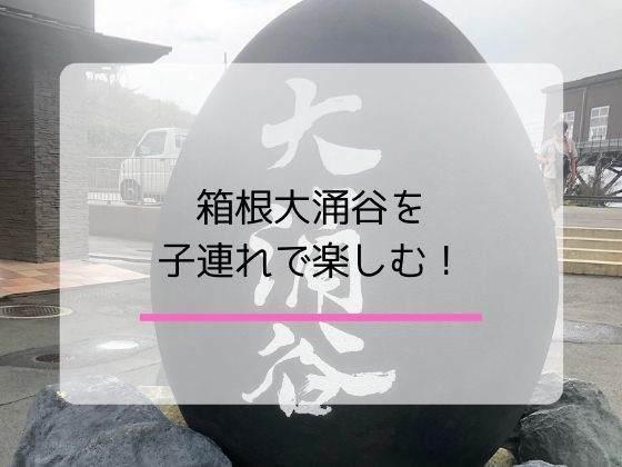 箱根大涌谷観光を子ども連れで思いっきり楽しむコツ!の記事のアイキャッチ