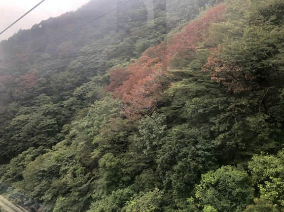 箱根ロープウェイからみた早雲山の景色