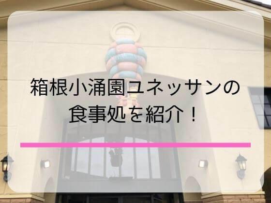 箱根小涌園ユネッサンのランチができる食事処を紹介する記事のアイキャッチ画像