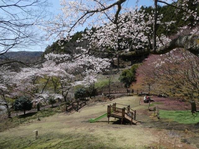 姫野沢公園のアスレチック