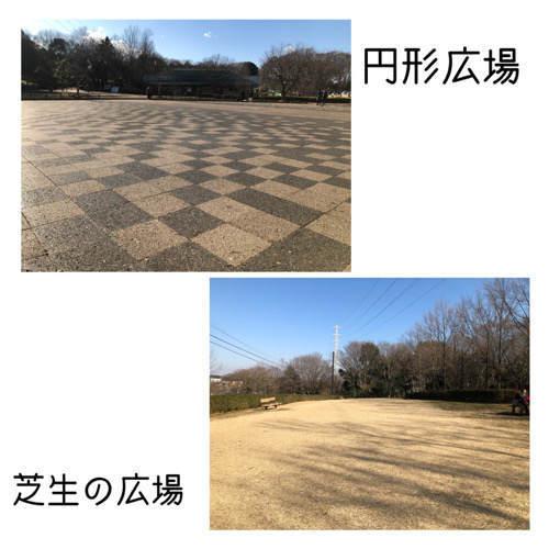 座間谷戸山公園にある広場