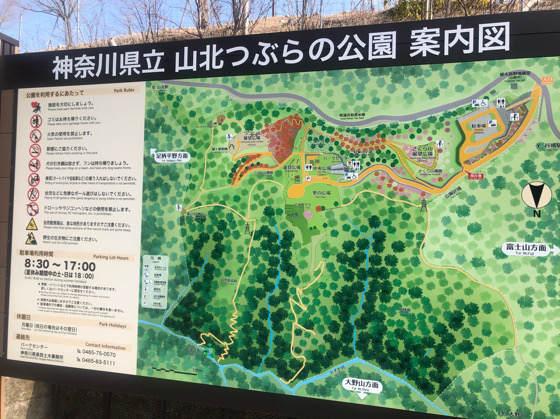 山北つぶらの公園の地図
