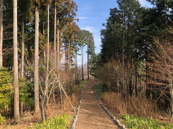 山北つぶらの公園の誰もいない散策路